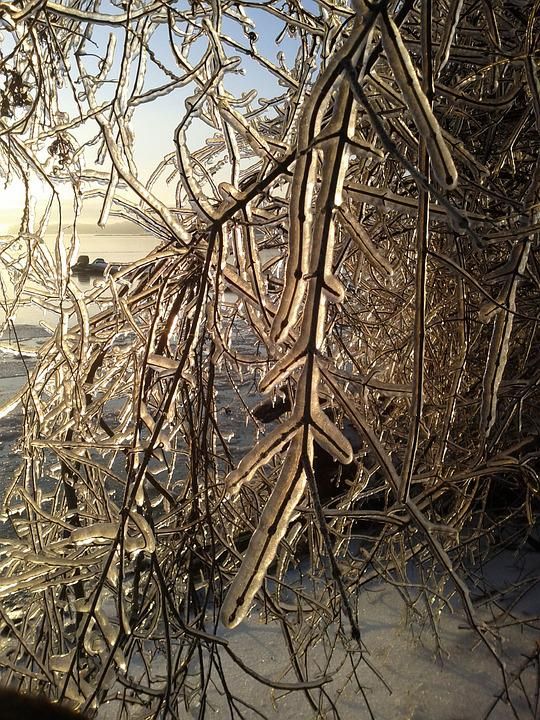 Ice Storm, Winter, Storm, Cold, Icy, Frozen, Nature