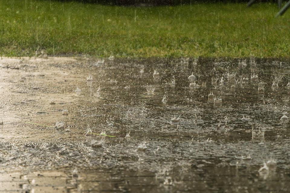 Rain, Weather, Raindrop, Heavy Rain, Storm, Wet, Nature