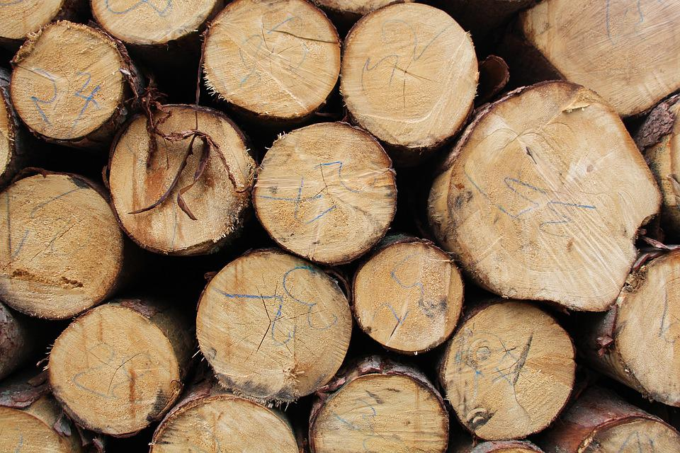 Wood, Forest, Woods, Timber, Log, Logs, Trees, Strain