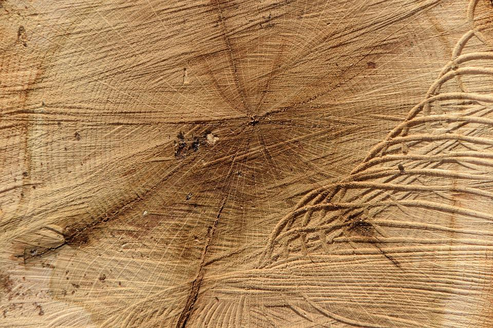 Log, Structure, Wood, Macro, Close, Tribe, Strains