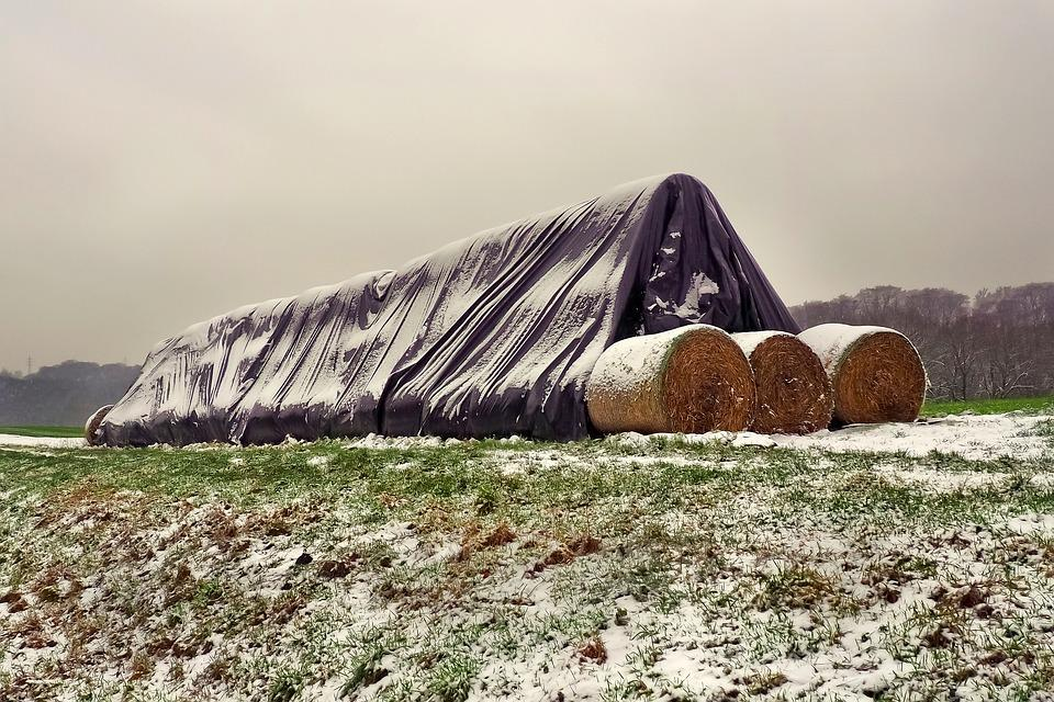 Straw, Straw Bales, Agriculture, Field, Round Bales