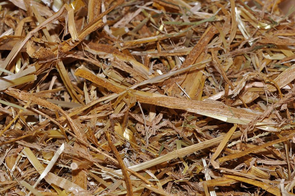 Straw, Animal Bedding, Natural Material, Close, Texture