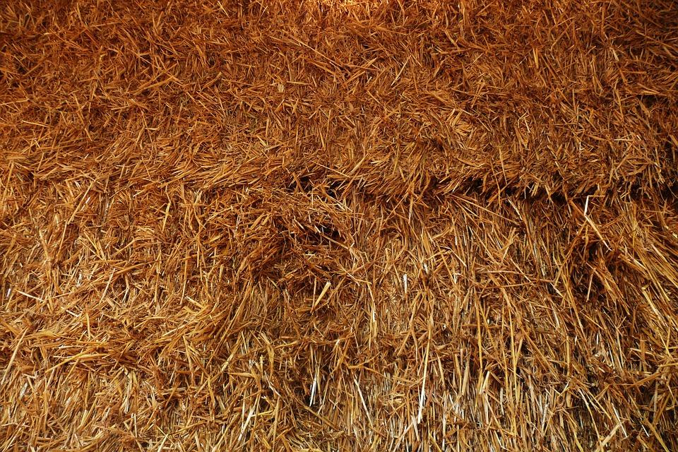 Hay, Straw, Farm, Agriculture, Farming, Golden, Harvest