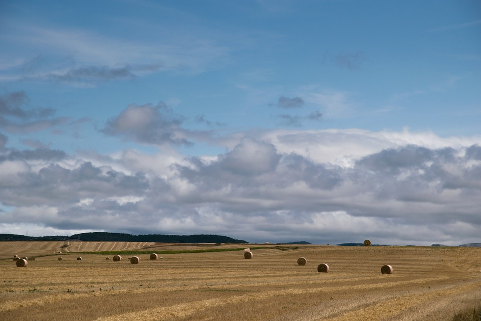 Palencia, Mowing, Straw, Clouds, Sky
