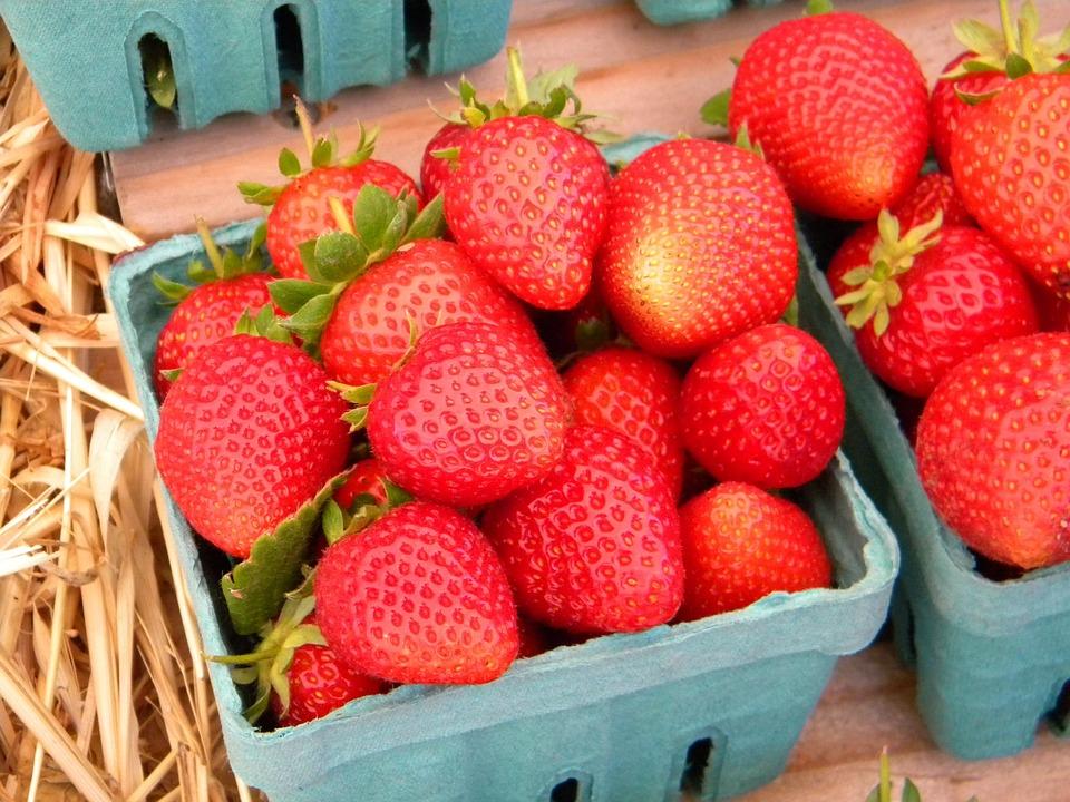 Free photo Strawberry Eating Organic Gardening Basket Fruit Max