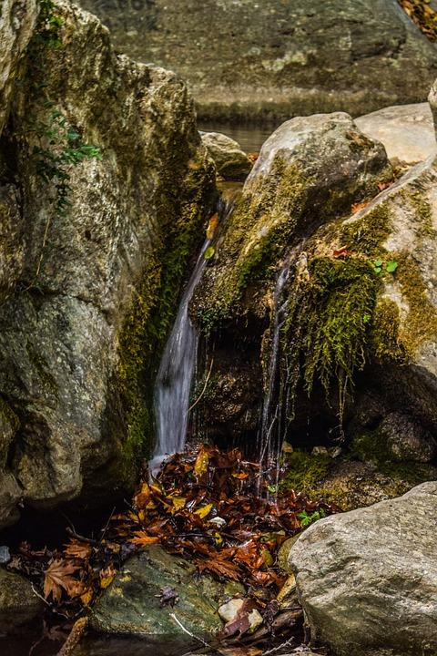 Stream, Water, Clean, Nature, Liquid, Flow, Creek