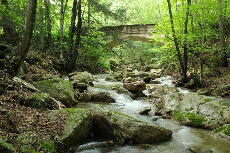 Water, Stream, Bridge, Nature, Rocks