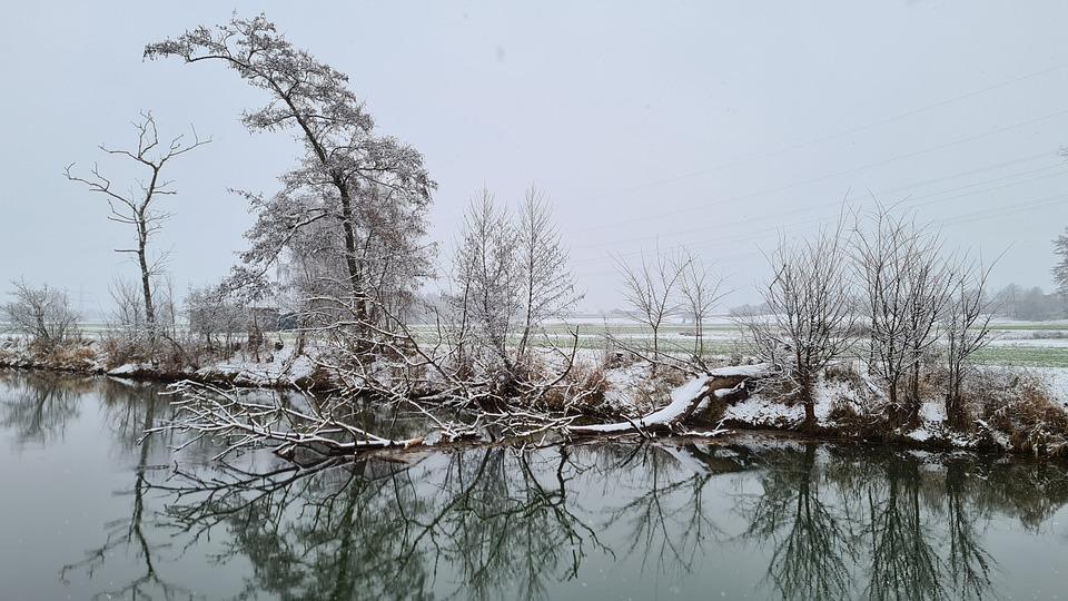 Winter, Trees, Stream, Brook, Canal, Hoarfrost, Snowy