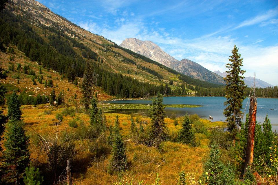 String Lake Trail, Trail, Lake, String Lake, Grand