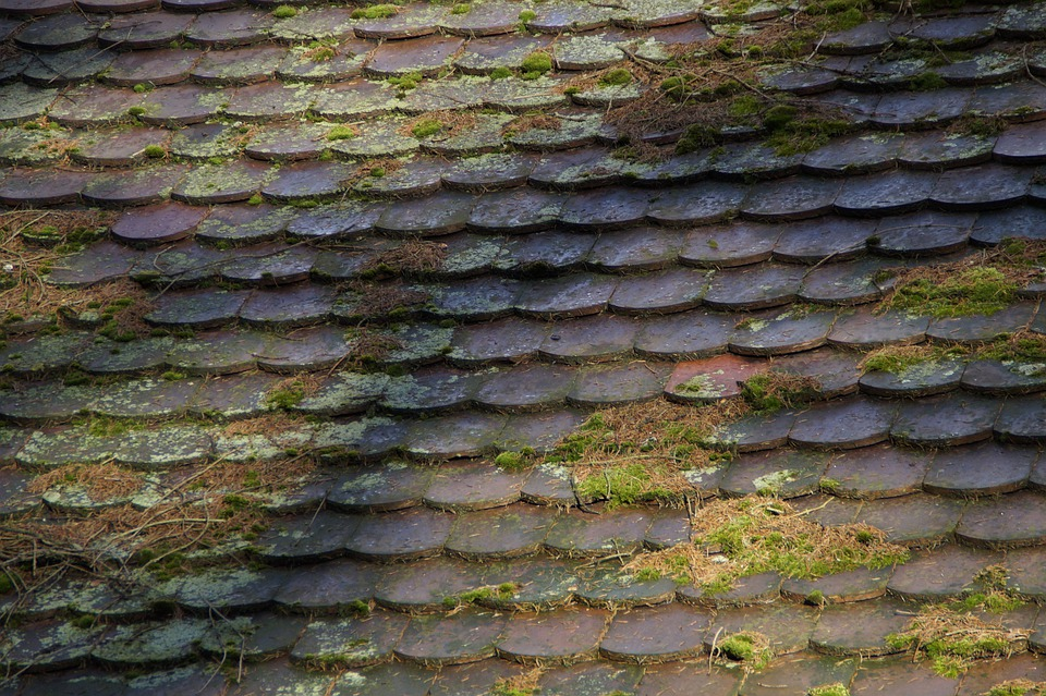 Brick, Roof, Structure, Texture, Background, Old