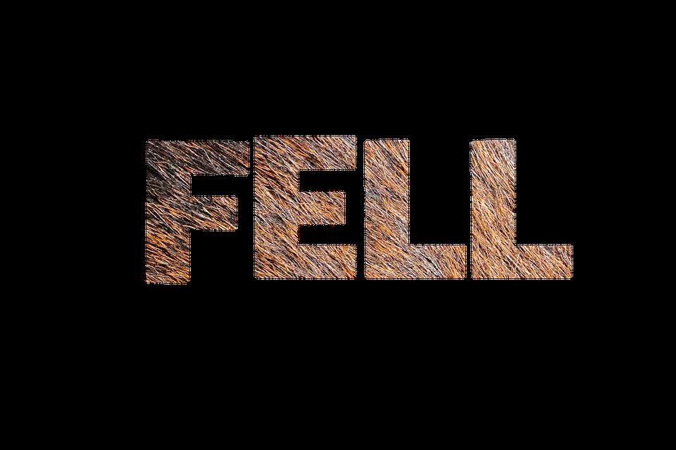Fur, Texture, Lettering, Structure
