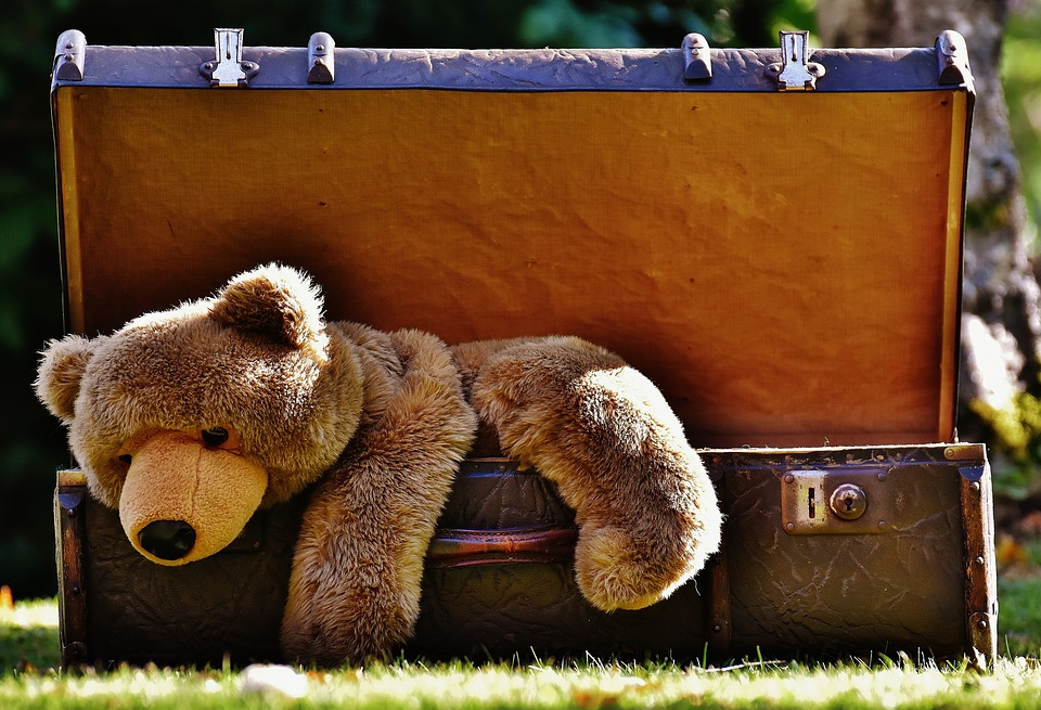 Luggage, Antique, Teddy, Soft Toy, Stuffed Animal, Toys