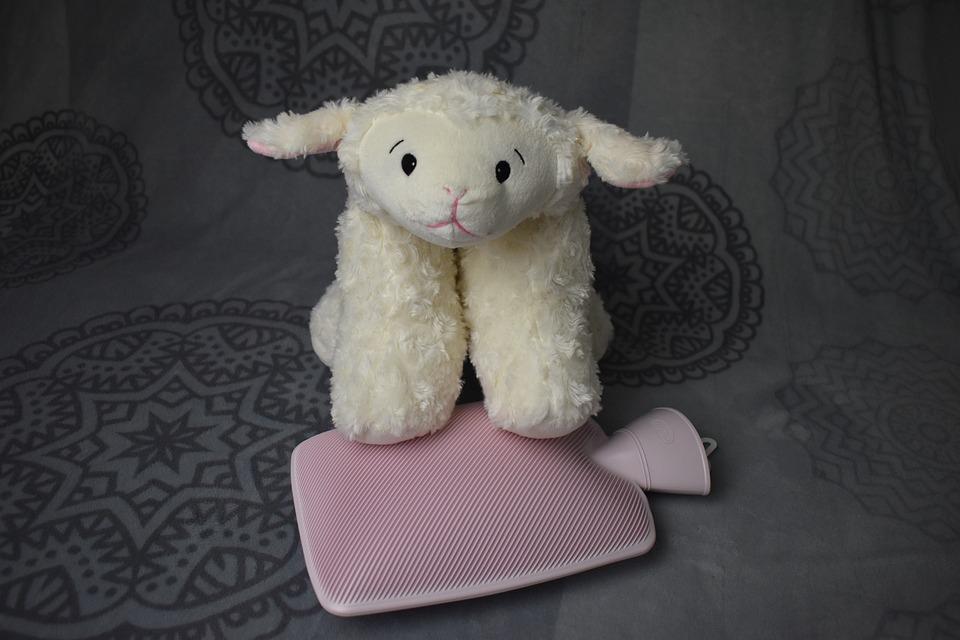 Sheep, Teddy Bear, Hot Water Bottle, Stuffed Animal