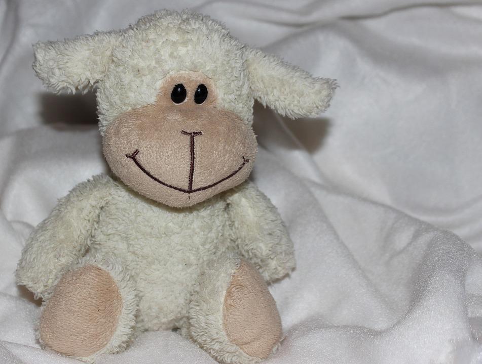 Teddy Bear, Soft, Soft Toy, Stuffed Animal, Cute, Purry
