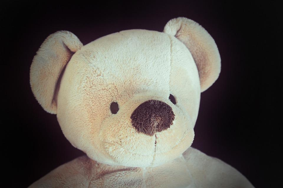Teddy Bear, Teddy, Soft, Soft Toy, Stuffed Animal