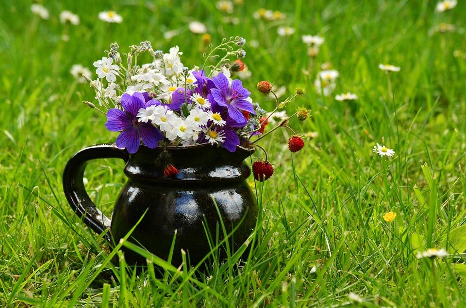 Flower Meadow, Bouquet, Wildflowers, Summer, Colorful