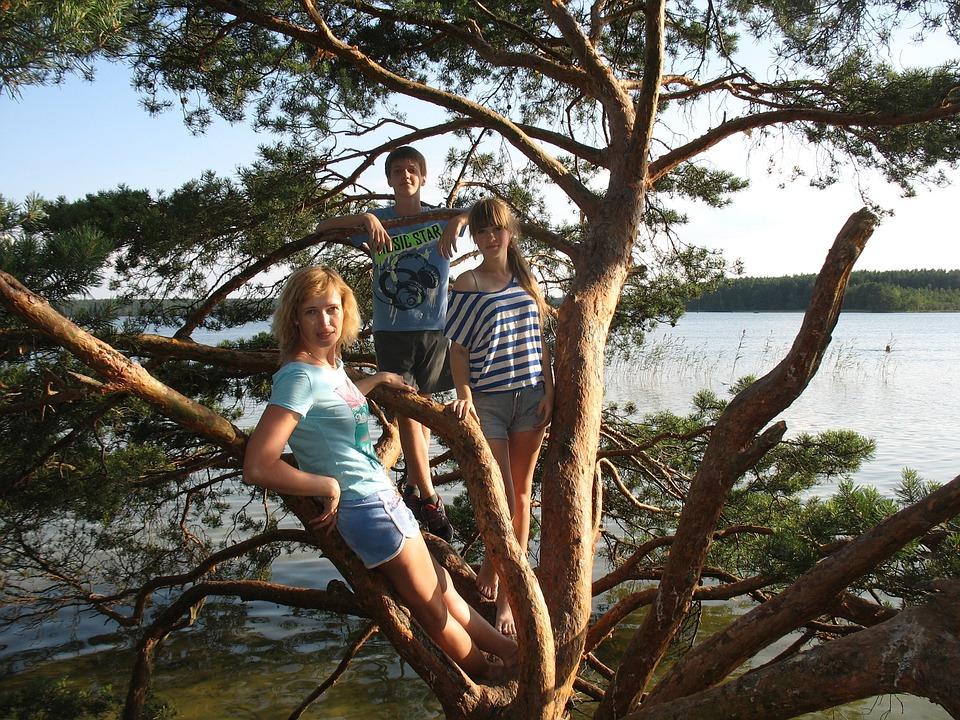 Lake, White, Company, Summer, Nature, Water