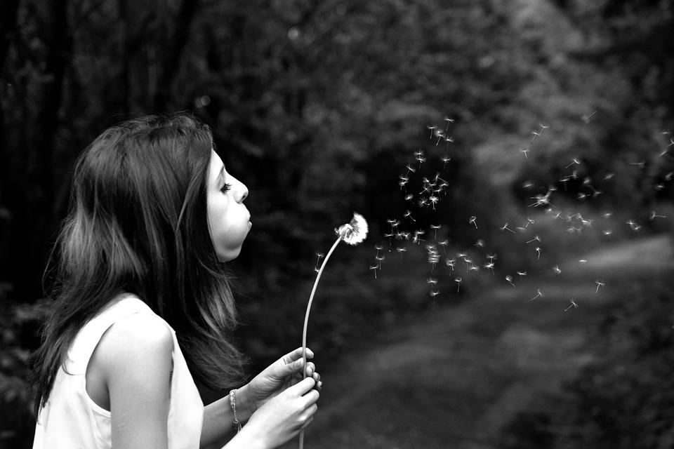 Girl, Dandelion, Wish, Summer