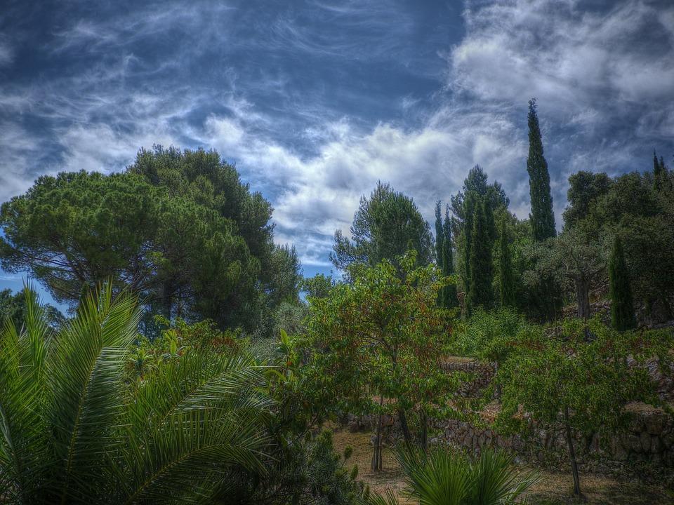 Esportees, Mallorca, Finca, Summer, Holiday, Spain
