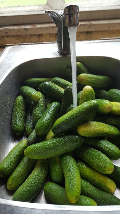 Cucumber, Summer, Vegetables, Green, Food, Fresh