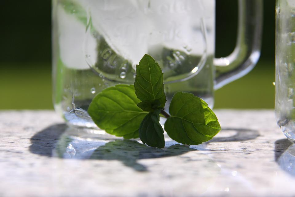 Mint, Glass, Drink, Summer, Liquid, Benefit From, Cold