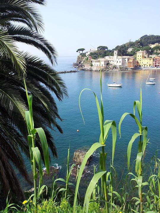 Sea, Sestri Levante, Summer, Bay, Italy