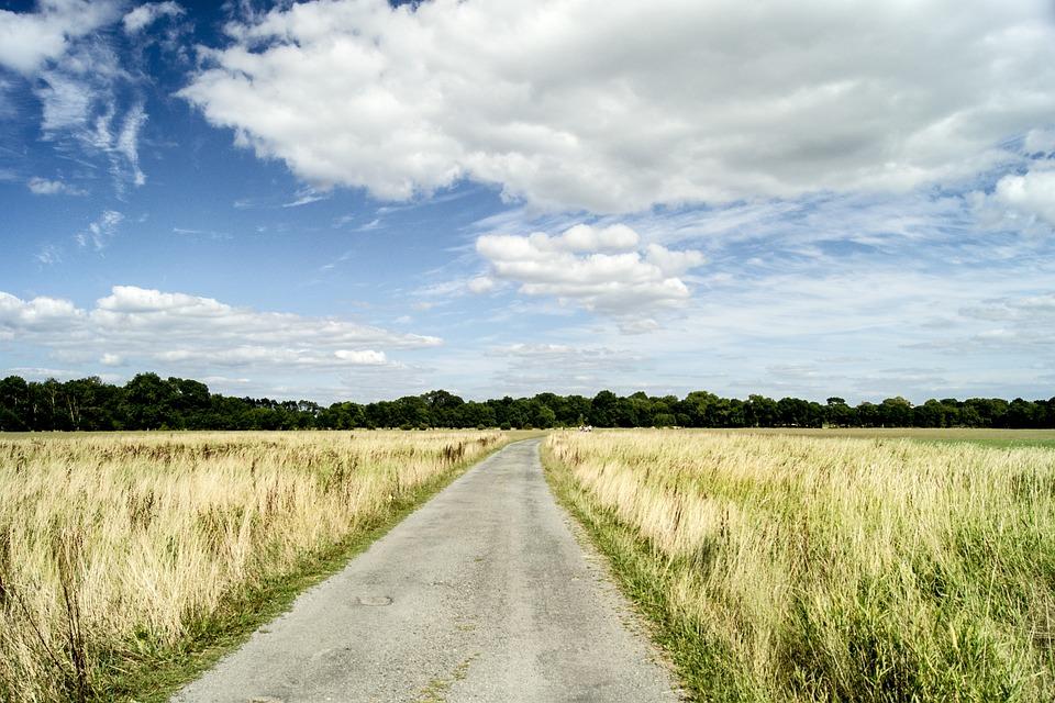Landscape, Nature, Field, Sky, Cloud, Summer
