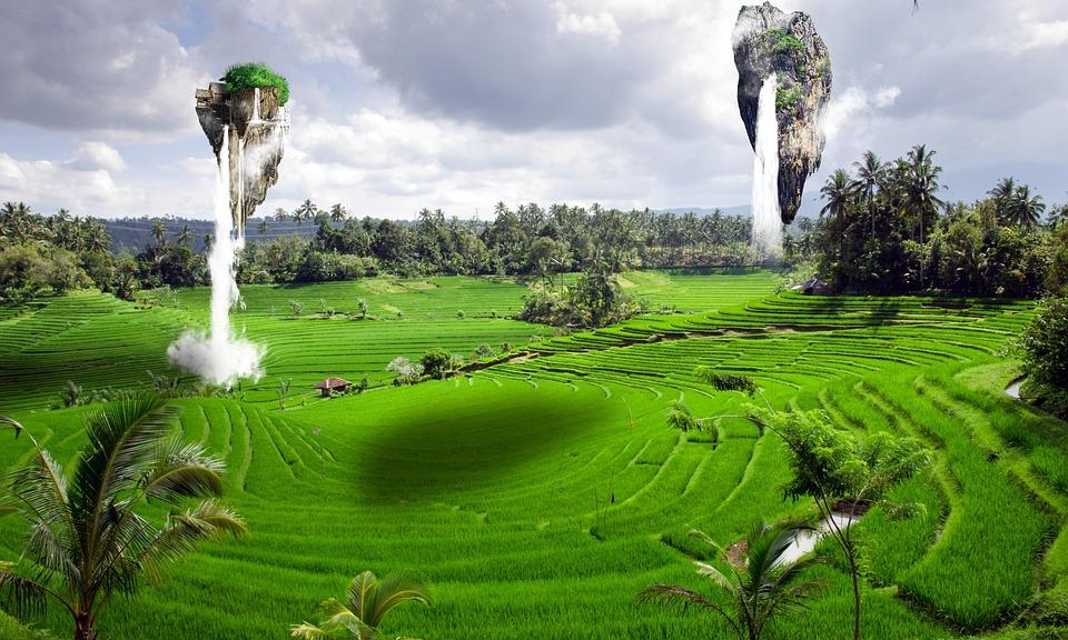 Summer, Grass, Nature, Landscape