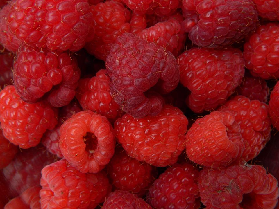 Fruit, Raspberry, Red, Summer, Nearby
