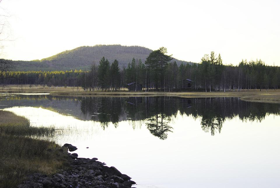 Lake, Fish, Fishing, Summer Night, Midnight Sun, Sunset