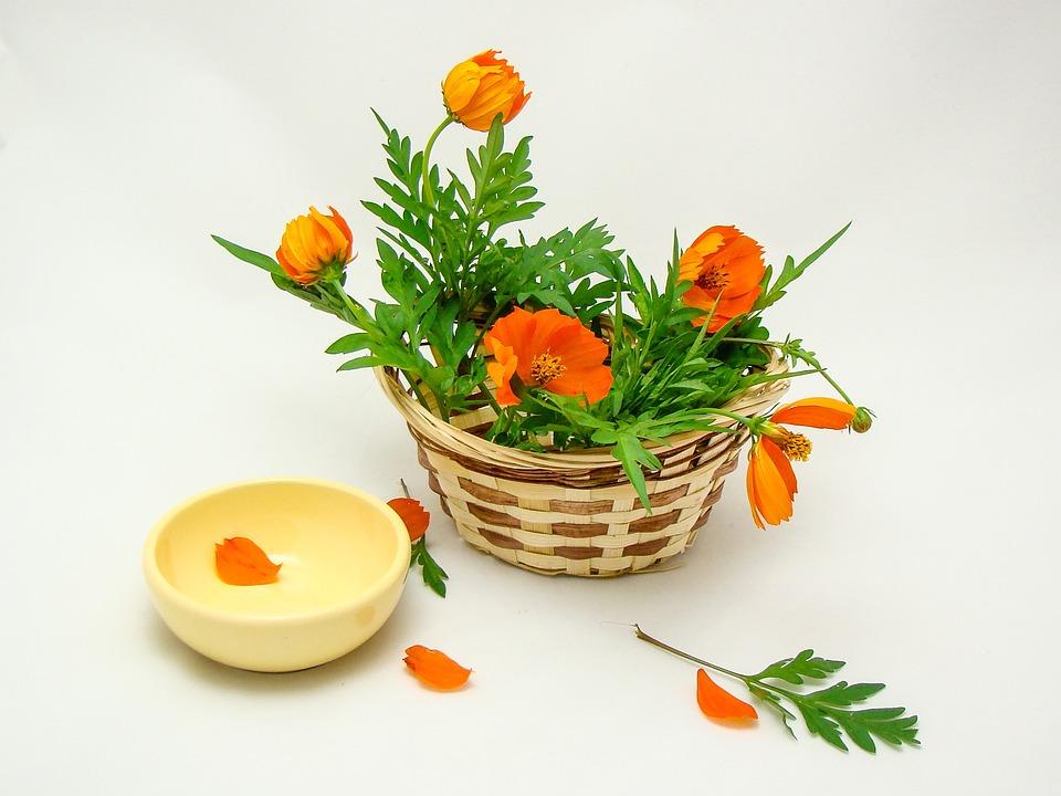 Flowers, Basket, Green, Orange, Yellow, Nature, Summer