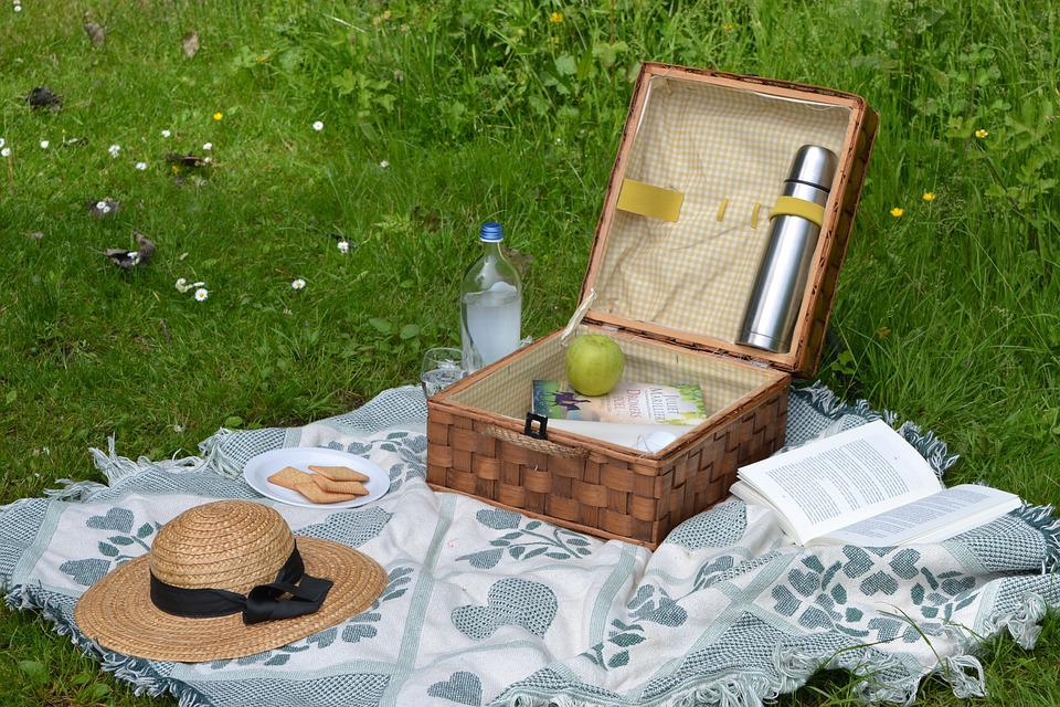 Picnic, Book, Summer, Spring, Reading, Relax, Park