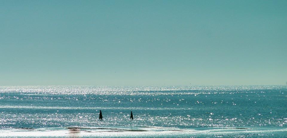 Sea, By The Sea, North Sea, Beach, Coast, Summer