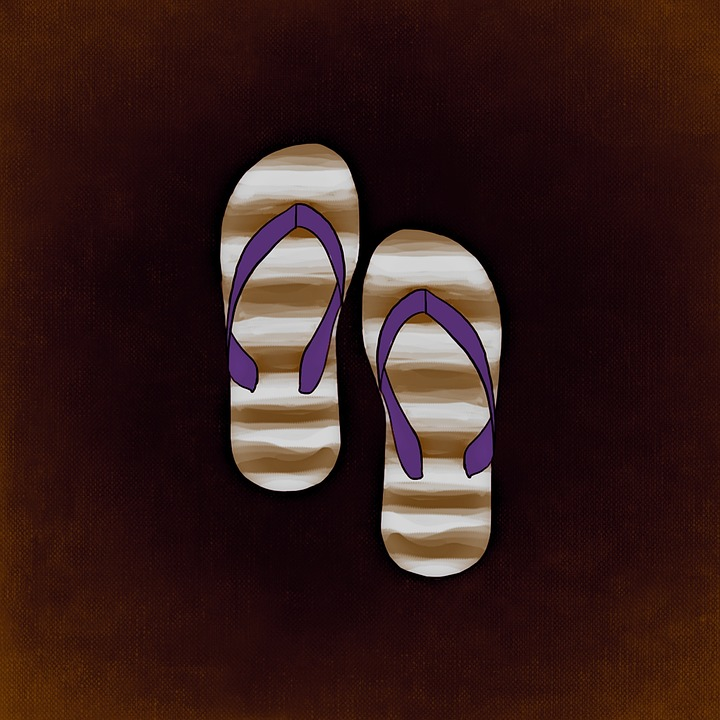 Slippers, Summer, Shoes, Funny, Flip Flops, Fun Bathing