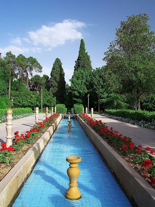 Summer, Tree, Beautiful, Tehran