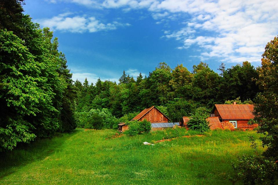 Village, Summer, Green, Tourism, Nature, Grass, Field