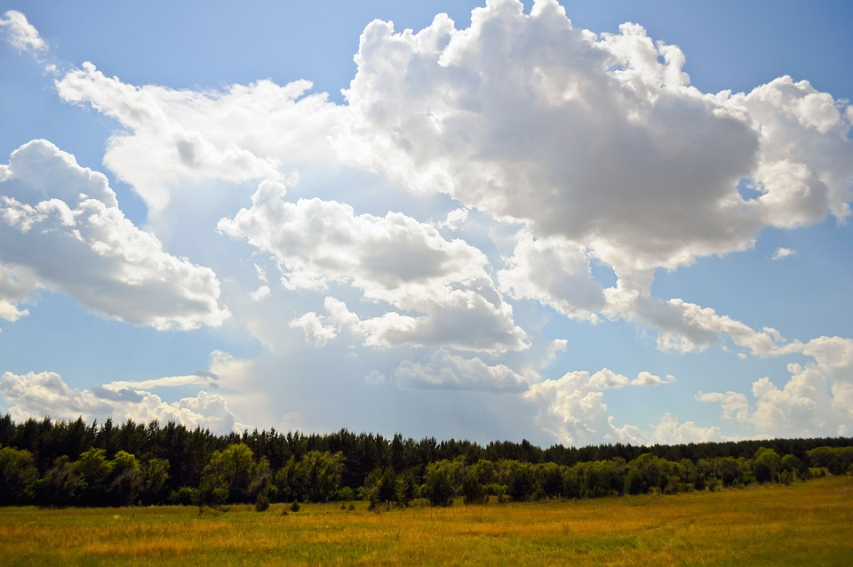 Sky, Clouds, Summer, Field, Landscape, Wilderness