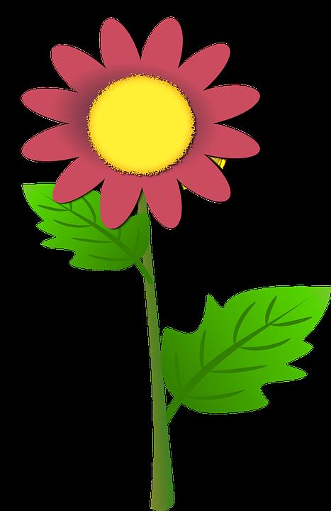 Sun Flower, Purple Sunflower, Plant, Floral