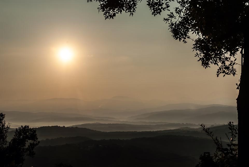 Tuscany, Italy, Sunrise, Morning, Sun, Forest, Trees