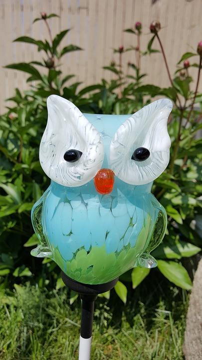 Owl, Sun, Glass