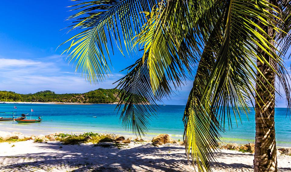 Holiday, Beach, Palm, Sun, Thailand, Asia, Nature