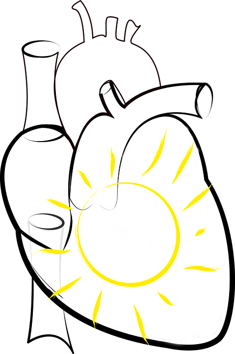 Heart, Sun, Sun In The Heart, Figure Of Speech, Png