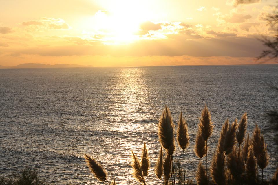 Sun, Sunset, Feather Duster, Sea, France, Light