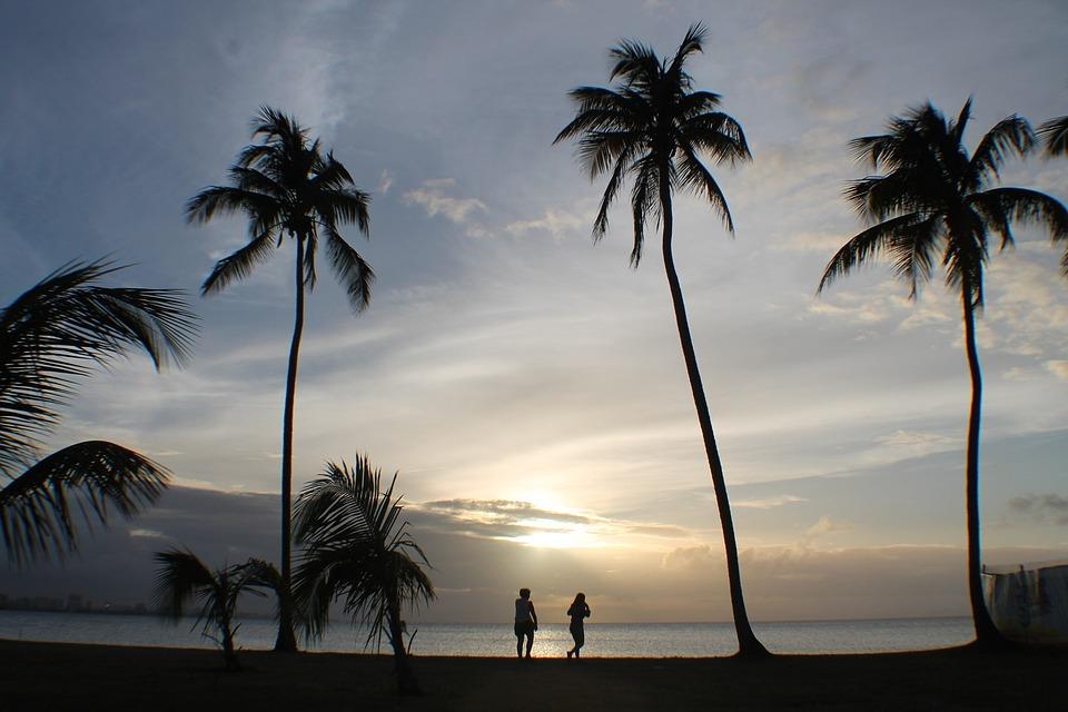 People, Palms, Sunset, Tropical, Silhouette, Sky, Sun