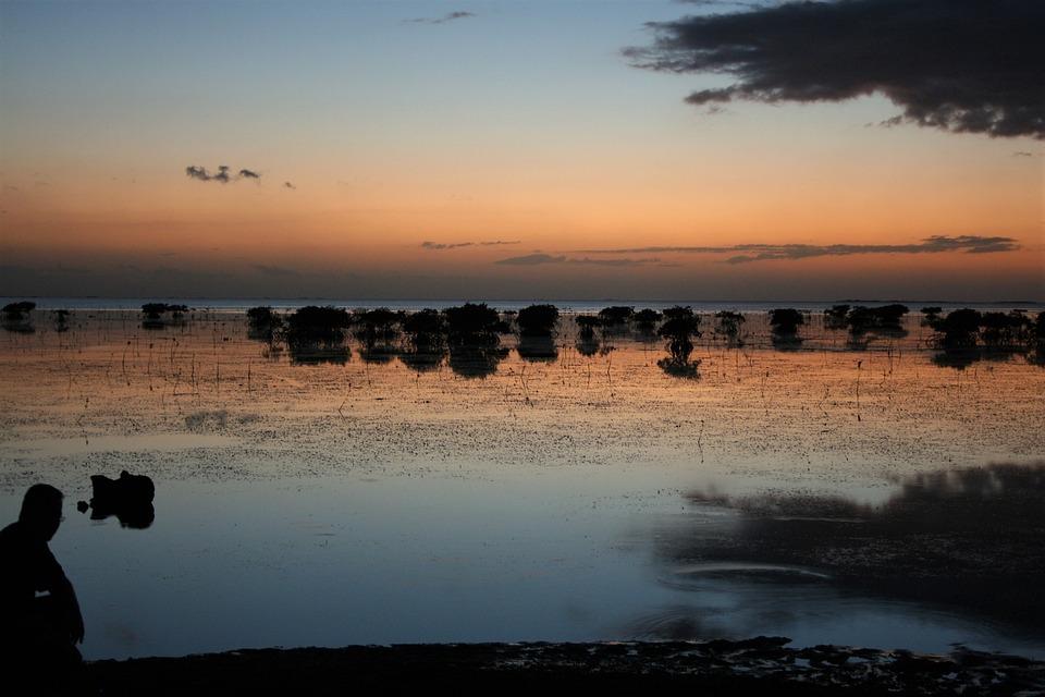 Sunset, Sun, Set, Dusk, Silhouette, Shadow, Reflection