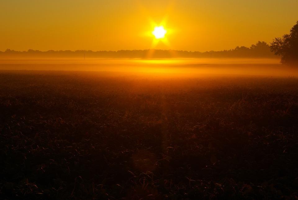 Sunrise Over Illinois Field, Dawn, Sunrise, Sun, Sky