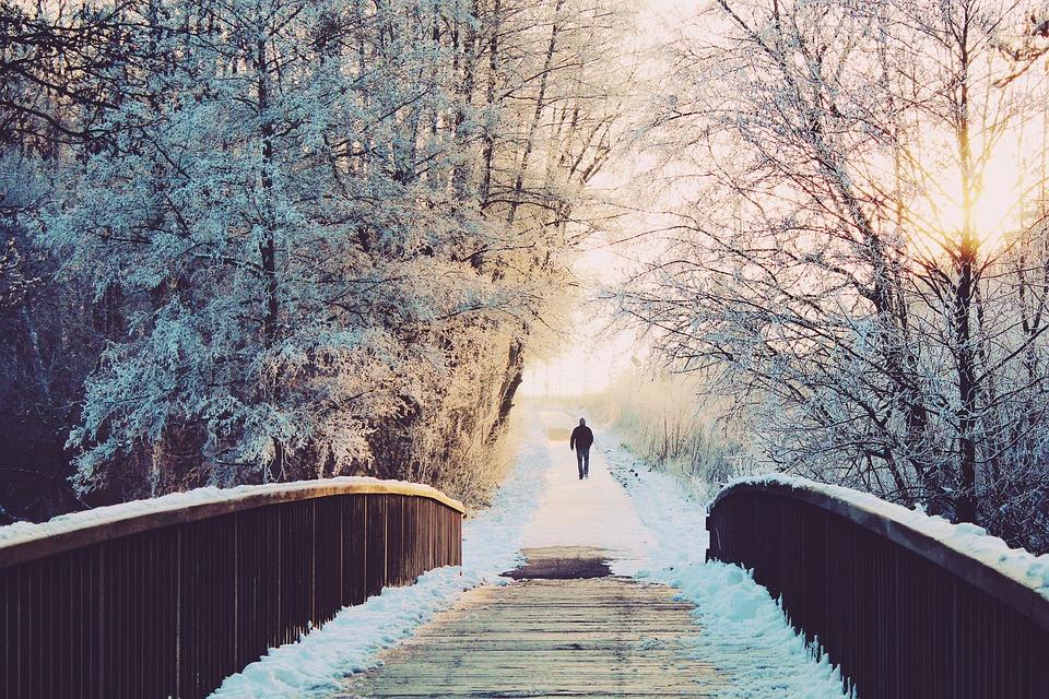 Man, Bridge, Lonely, Sun, Walk, Wintry, Winter