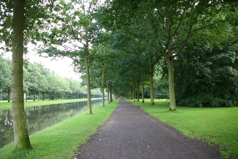 Park, Common, Garden, Bench, Stroll, Sunday, Peace