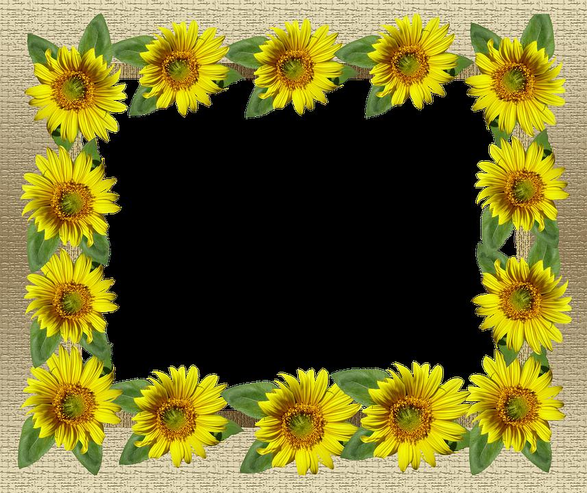 Free photo Sunflower Border Card Gold Frame - Max Pixel