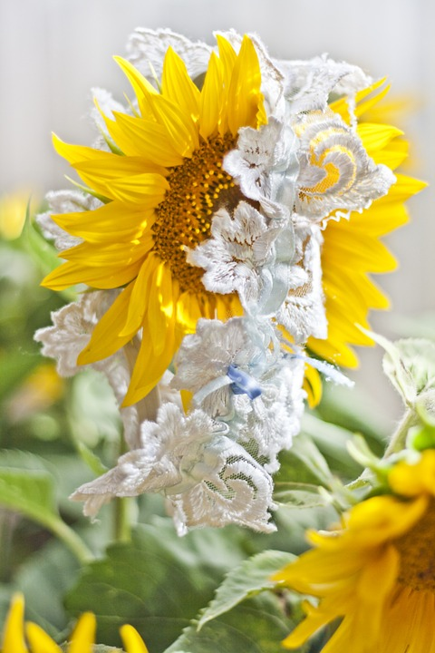 Garter, Wedding, Sunflower, White, Yellow, Flower